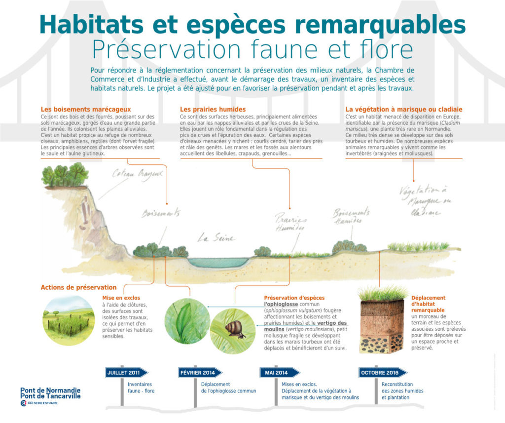 Tancarville Panneaux Pédagogiques Habitats Et Espèces Remarquables